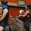 2014 Donkey Basketball