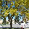 141009_CampusScenes_20