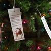 151111_ChristmasTreeDonations_03