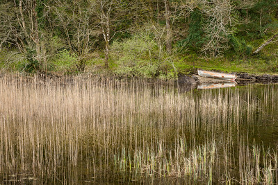 Ballynahinch Rowboat