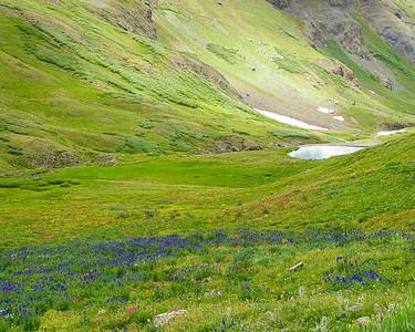 'Jewel' - Stony Pass, Colorado