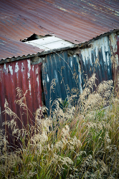 Steel and Grass