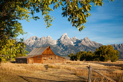 'Mimic' - Jackson Hole, Wyoming