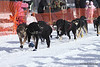 Scott White and dogs leave Willow bound for Nome in Iditarod 2010.