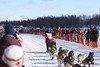 Paul Gebhardt and dogs leave Willow bound for Nome in Iditarod 2010.