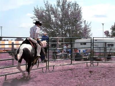 Colton Walters Horse Sermon 122