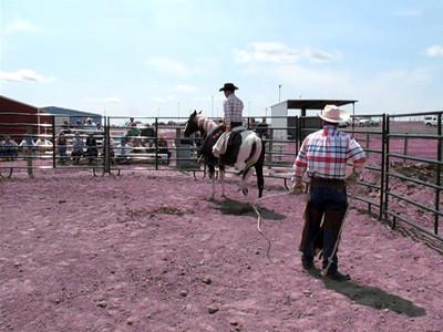 Colton Walters Horse Sermon 118