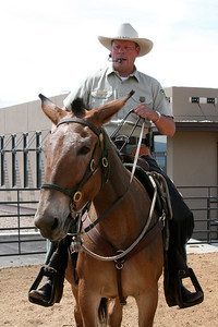 Bob Hoverson on his mule, Grace