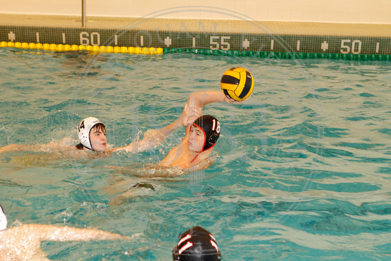 water-polo_0081