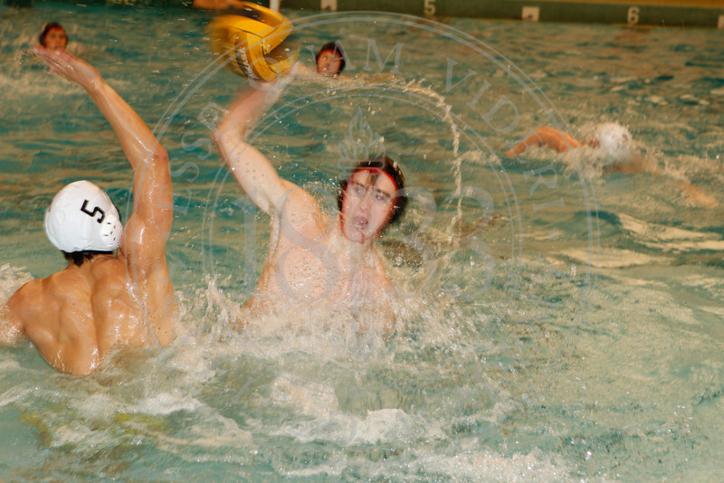 water-polo_0078
