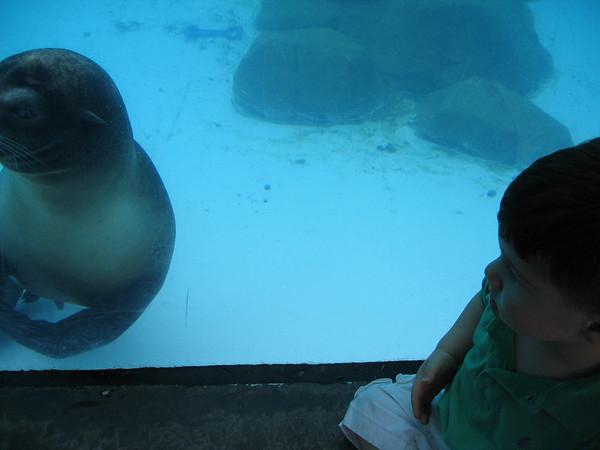 08.30.06 Aunt Lauren, Kim & Zane Zoo