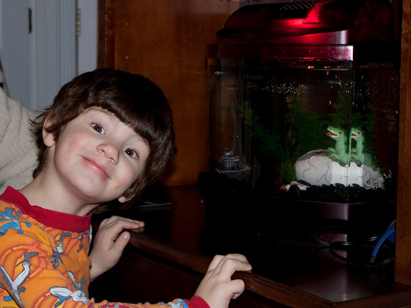 12.22.08 Zane's Fish Tank & Decorating