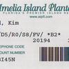 amelia island plantation-8
