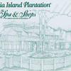 amelia island plantation key-11