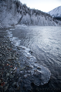 Padded shore. Kenai River. Cooper Landing, AK.