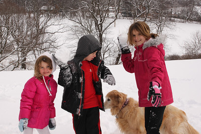 12112 Snowy Fun-191