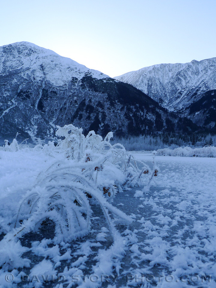 Hoar frost lines the grasses along the shores of Tern Lake.