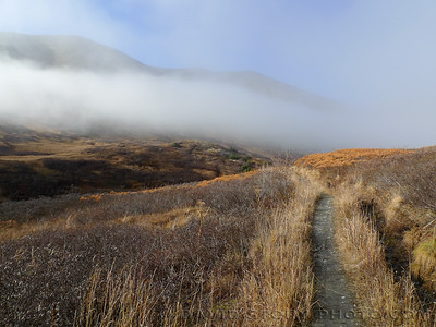Fog lifts and lowers along Devil's Creek Trail.