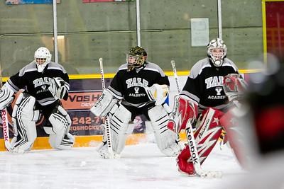 Fraser Falcons Hockey Academy