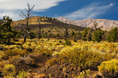 17 Aug 12.  We'll finish out this week with another of the old images that I've reworked. This one is from Craters of the Moon National Monument located in the south central  portion of ID. I was told by some folks that I would really find it disappointing and by others that I would love it. We visited it twice on one trip so you know where I fell in that assessment. The yellow flowers that I mentioned lined the side of the road in Kolob Canyon were also present in great abundance at Craters of the Moon and fill a goodly portion of this image. The combination of the flowers in front, the dead trees in the middle, and the hills in the background provided an opportunity for some fun photography. If you ever find yourself anywhere near that part of ID, I highly recommend you pay it a visit. This image was taken at the very end of September; 8 days later it was under 6 inches of snow. D300; Aperture Priotity; ISO 500; 1/500 sec @ f /11.