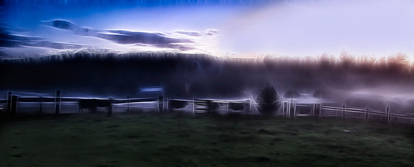 10 Dec 12.  About three weeks back on the evening I was taking the images in the fog of my cousin's farm, I was initially greeted by 6 cows, sisters in a vague sense, who did their best to put their noses into the lens of the camera. It is always a challenge to try and befriend these rather skittish critters, so to have them willingly and with some degree of urgency come right over and make their presence known was simultaneously both a treat and a bit of an annoyance. I stopped taking photos and attempted to stroke a couple of heads but that wasn't exactly what they had in mind and moved away. As I was working with the fog they all lined up at one point along the fence, head to tail, but with some random spacing between them. I took a few shots of that presentation and played with one of them to make a creative image that substantially more than the original depicts how I was visualizing the setting. The original was duped, given a curves layer to increase the contrast, with those two layers flattened. That layer was duped and brought into a filter to give the streaky effect, and then was blended with the layer below it in two ways, first by reducing the opacity of the creative effect layer, and then changing the blend mode to overlay. Those layers were flattened, and then I had to do some specific selections to paint out a few areas that had become overblown in all this processing. That was all flattened and converted to the srgb color space for sharing on the web.  D300s; 18 - 200; Aperture Priority; ISO 800; 1/2 sec @ f /8 hand held.