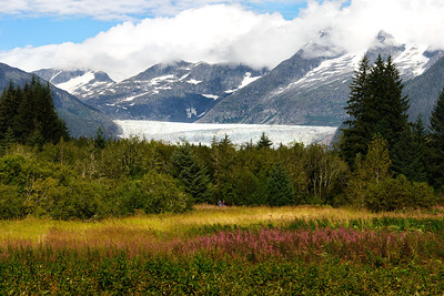 01 Oct 12.  Here is another shot of the Mendenhall Glacier taken from on of the local viewpoints. Some of you will be surprised to see people in the image, but in this case they provided a bit of needed perspective. I was visiting a bit too late to have the fire weed at peak color, but there was still enough remaining to provide for some variation in the foreground. Seeing this glacier up close is pretty impressive; one can only imagine what it must have looked like 100 years ago based on the information in the visitor's center that it has been receding at a rate of 3 feet per year on average for the past 100 years.  I would assume that as it has receded it has also shrunk in height, so it must have been really impressive back then. Next trip up to Juneau, weather permitting, I plan on walking on it and getting some shots from that perspective. I did that when we visited the Athabaska Glacier in Alberta back in '73 and it was a memorable experience; I suspect that Mendenhall will provide no less. The clouds you see did not remain white for long and about two hours after this shot was taken we entered into a 5 day rain shadow.  D800; 70 - 200; ISO 100; 1/320 sec @ f / 10.