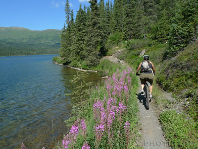 Pedaling Resurrection next to Juneau Lake. Cooper Landing, AK.