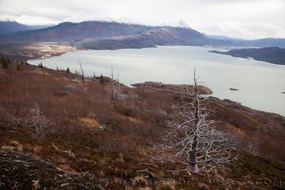 Looking over Skilak Lake.