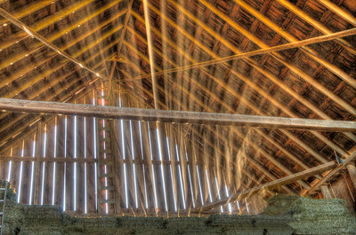 15 Jun 13.  It being that time of the year for harvesting the grass/grain crops, at least in this neck of the woods, and having not as of yet shared a single HDR image, I figured it was time to address both with an HDR composite of 4 images to create this shot of the god rays filtering in through the boards in the barn and bouncing off all the particulate matter in the air resultant from a combination of tractor exhaust and hay dust. There are two things that make you aware of just how much material is in the air when working with the haying process and one of them is seeing it via the light streaming inside an enclosed area which traps it and the other is breathing it. One makes for interesting photos, the other does not. So we shall stay with the filtered light approach. The beam running across the center of the shot is something I would prefer to not have in the image, but from the position I was having to occupy to shoot on this particular evening it was unavoidable. My cousin's two daughters were stacking the hay in the lower RH corner of the images so I had to remove them but otherwise this is basically the full capture. The 4 individual frames were combined into one, then I added some contrast enhancement to accentuate the beams of light. Finally I added a curves layer to adjust the overall contrast just a bit. Nikon D300s; 18 - 200; Aperture Priority; ISO 200; 1/4 sec @ f / 7.1 (middle of five exposures) on a tripod.