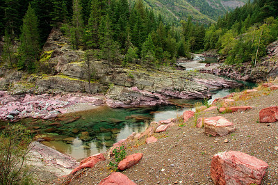 21 Oct 13.  When we previously visited Glacier National Park a few years back, I was struck by the red color I saw in rocks alongside the road as well as those in a stream bed just beyond one end of the Many Glacier parking lot. The stream bed was empty and I took a 5 shot series of the location and made an almost over the top HDR image to share on this list. It was well received, as was, to a slightly lesser extent, one of the red roadside rocks. So I was hoping to play in those two areas of the park on our return this time, but sorta ran out of time due to weather conditions. But I wasn't disappointed as I was amazed at how much red rock there is in the park. The rocks in the stream bed I shared on Friday seem to be readily available throughout the park, and come in many sizes from pebbles to boulders. You just have to look a bit and you'll find them everywhere. Driving a short distance further along from where I took the shot for Friday's submission, we came upon a pullout to the left of the road that, based on the number of cars there, was going to provide some worthwhile shots, and I wasn't disappointed. From this location I'll share two or three, all different, and all from a few feet apart. This one was shot very near the edge of the pullout and required nothing more than maneuvering a bit to get the composition I desired. The road is immediately to the right of the frame and it follows the McDonald river as it meanders left and right for quite a few miles. I've added quite a bit of micro contrast enhancement to this image to give you a better feel for the amazing colors and textures that were present in the rocks. You can view it best sitting back about two feet from the screen, or at least that's how it best displays on my monitors. The weather was really overcast, the light dull and flat, and with a blue tint, so I've had to do a little work, as follows, to get the colors to show as they should. Starting with the background layer, I added a curves adjustment to darken the rocks in the foreground. Then I applied the detail extraction on a new layer, follow by strongly pushing the contrast to compensate for the flat lighting. Then I adjusted the hues of the red, magenta, and yellows to get everything in balance, finally adding an export  sharpening layer, and then the normal reducing to 8 bit format ( I do the work in 16 bit), setting the color gamut for the screen and flattening all the layers for export as a jpg image. Nikon D300s; 18 - 200; Aperture Priority; ISO 200; 1/80 sec @ f / 9.