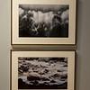 Photos by Jack Roach '15