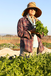 Sarah McCamman – the only full-time farmer  grows and sells vegetables, fruits and herbs.