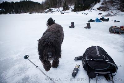 Capella. Grant Lake, Moose Pass, AK.