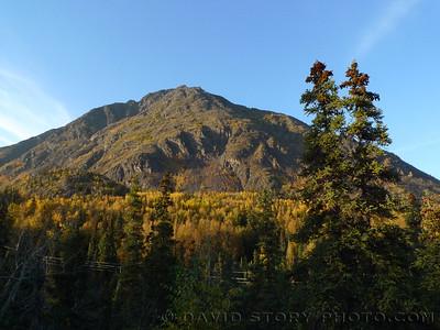 Langille Mountain, Cooper Landing, AK.