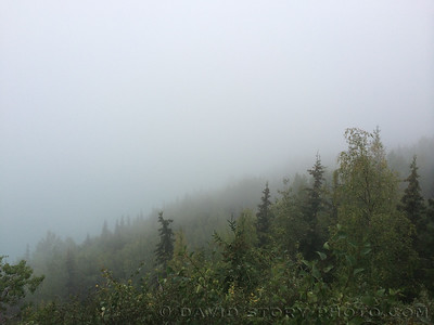 Our Point of Fog. Cooper Landing, AK.