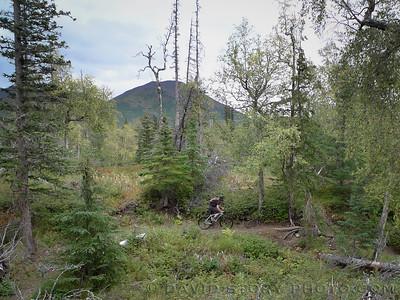 Jiving on the Hillside. Anchorage, AK.