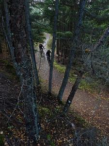 Climbing up Crescent Creek Trail. Cooper Landing, AK.