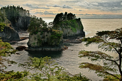 "27 Aug 14.  The furthest NW you can reach in WA state, and likewise in the contiguous 48 states, is Cape Flattery. It was named by Captain James Cook on 22 March 1778 during his search for the NW Passage because ""there appeared to be a small opening which flattered us with the hopes of finding an harbour ...""  I believe this to be the only cape similarly named. The trail from the highway to this lookout point is easily traversed, takes about 15 minutes of walking on a very well maintained trail, and affords many magnificent views at its termination, as well as some nice views of heavily forested land along the way. The trail is not handicapped accessible, nor would folks with walking difficulties find it welcoming, but otherwise not difficult at all. The rocks, on the day and time of our visit, seemed to me to have a rather unusual texture to them, which may have been due to the evening lighting which was very contrasty in the cove. The camera did not record what I was sensing, and while what it recorded was likely a more accurate version of how the rocks actually are, the capture didn't come close to what I was experiencing. As such, in an attempt to convey what I was experiencing, I've increased the micro contrast of the rocks to render them closer to what I ""saw."" When you visit I'll wager you see them very differently from what I saw when we were there. Nikon D300s; 18 -200; Aperture Priority; ISO 200; 1/1000 sec @ f / 8."