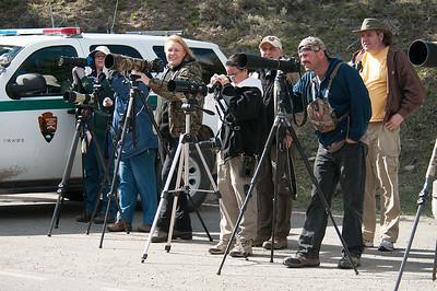 The film crew.