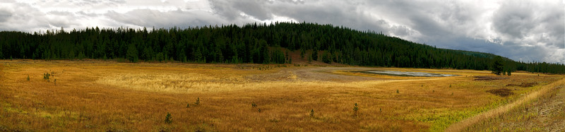 08 Oct 14.  Driving around the western edge of Yellowstone National Park a couple weeks ago during our 4 day rainy period, I was struck by the large variety of yellows in the grasses that in visits past have been primarily dull grays. This pano consisting of 11 frames was taken along the edge of Hwy-191 where it runs through and parallel to the far western edge of the park. The weather was stormy and quite overcast, but still sufficiently bright enough, while not open sunlight harsh, as you can likely tell when looking at the image, to paint the ground with lovely color. Take a moment and study the image looking carefully at the number of shades of yellow; there are far more than you might have originally thought. We saw lots of this type of color wherever we went on this trip including the grassy areas near the condo, apparently the result of a wet summer. While I wouldn't want to put a damper on the neighbor's summer, if this type of color is the result of lots of summer rain, I'll vote for it especially since I get the benefits of it without having to experience it.  ISO 200; 1/320 sec @ f /10.
