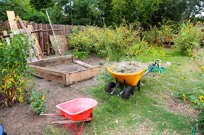 Photo by Joan Cusick for Oak Park Sol community garden