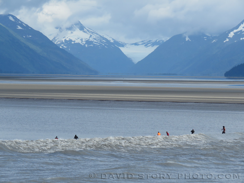 Surfing the bore tide on Turnagain Arm, AK.