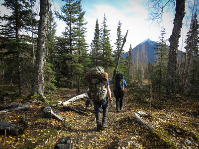Hiking south towards Cecil Rhode on Resurrection Pass Trail. Cooper Landing, AK. Oct. 2015