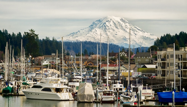 11 Mar 15	.  Last Tuesday I shared a B&W version of a group of fishing boats in one of the marinas in Gig Harbor, WA. As you recall, out goal was to get a nice shot of Mt Rainier but I messed up in getting off the freeway and by the time we did the shot I was seeking was no longer available. So we walked around a bit, found a very friendly resident sitting on her stoop where we had parked the vehicle, who had overheard us talking about what we were trying to find and gave us exact directions. My failure to fully appreciate what she told us resulted in my getting the image I shared Tuesday, after which we realized we hadn't gone as far as she indicated and we proceeded to so do. That final leg got us to our desired destination, Donkey Bridge. Parking next to Donkey Bridge Park, we walked across the street to get this shot. I got the idea from the cover of the 2014 - 15 Official Visitors Guide to Gig Harbor, but took a very different approach to that of the photographer who did the cover shot. He used a long telephoto lens and vertical composition to emphasize the boats and shore with people, whereas I went with a short telephoto, horizontal composition, and wanted the mountain as my main subject. Two very different photos of the same subject taken from the same location. Fun!  I took the raw capture, cropped it to get the perspective I wanted, increased the micro contrast overall and added a very slight vignette to pull your eyes away from the edges. You should be totally unaware of all these adjustments, but without them the mountain would hold no interest. However, what I did was to create the image I saw while driving and which had escaped me, the lighting having changed, by the time we eventually got to Donkey Bridge. Nikon D300s; 18 - 200; Aperture Priority; ISO 200; 1/400 sec @ f /10.