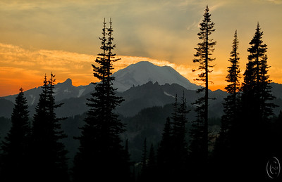 16 Nov 15.   When most folks travel to Mt Rainier to shoot the mountain it is generally to either the Paradise or Sunrise visitor centers. Most, but not all, of the photos you see come either from those two areas or from the trails that begin in those locations. There is a third location that offers some very nice views of the mountain but at a greater distance. Tipsoo Lake is a bit off the general path although it lies immediately adjacent to the highway and is very easily accessible. Tipsoo Lake offers 3 areas that can be reached by anyone and a fourth that is available only to the strong willed, as it is at the top of a rather impressive mound of rock. I've worked 3 of the 4 and would like one day to make the climb up the mountain. Although the path to the top is well maintained, it is quite narrow and I'm not sure that I would be able to deal psychologically walking so close to the edge of a very steep drop. This shot was taken from the side of the road with the lake immediately to my back as the sun was sinking directly behind the mountain. I wanted to capture the layered look of that in the traditional Japanese water color prints but not with the subdued pastel look or the simple background. One of these times I gonna try to emulate that total look but I'll likely need to study it some to determine how to get that result. I know how to do it in the studio, it is the on location approach with which I have no idea at the moment.  The base image is actually 5 individual shots [ -2, -1, metered, +1, +2 ] which I ran through an HDR program to get a single image. Next I enhanced the small details to tease out the layering that my eyes could clearly see but the camera not so well, then gave it a small amount of global micro contrast enhancement. Nikon D300s; 18 - 200; Aperture priority; ISO 400; 1/160 sec (middle of 5 exposures) @ f /13.