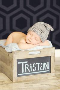 Tristan - 005
