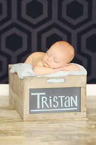 Tristan - 001