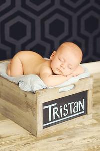 Tristan - 002