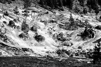 15 Nov 16.    Earlier this year I shared a similar image to that for today, but it was in color and this one B&W. When I made the conversion of this shot to B&W I was somewhat surprised as to how much it looked like the area had been covered by a light snow fall. It hadn't of course and part of the obvious give away is that the fallen logs are lacking a bit of white on their upper most aspect and none of the tree branches are frosted, but I still felt like it looked a bit winter like so I thought I'd share it. The water in this shot looks like it is really moving fast but it is somewhat deceiving as the depth in this location is perhaps 18 inches at most. The mildly blurry portions of the photo are areas where steam is rising up out of the rock. About a mile or so down the road - right hand side of the photo - you encounter Gibbon Falls which is fed by this river. The water flowing over the falls is impressive, and considering that this river as you see it is what feeds the falls, I've never understood where all the water comes from that roars over that rock precipice. Maybe someday I'll figure it out.  This is another of the right out of the camera shots except for the B&W conversion.  Nikon D300s; 18 - 200; Aperture Priority; ISO 200; 1/250 sec @ f / 8.