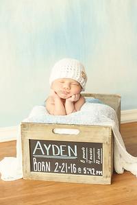 Ayden - 008